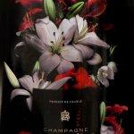 Champagne A. Bergére Brut Sélection Flowers - etikett